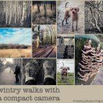 compact camera tips